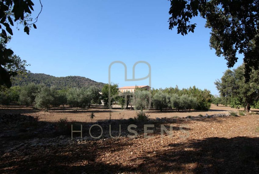 Luxury Villa in Pollensa Mallorca on sale Gatells (47)